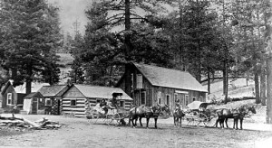 The Bear Valley Hotel in 1889.  -  Rick Keppler Collection.