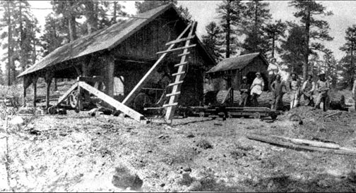 Sawmill Cove in the late 1800's, after the dam was built that drowned 9,000 trees. - Rick Keppler Collection.